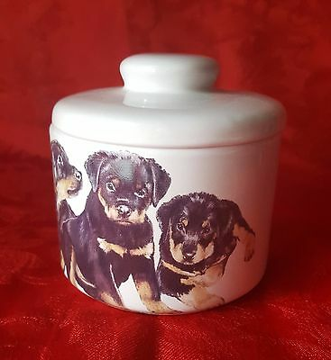 ROTTWEILER Puppies Porcelain Jar Treat Bowl Gift Dog Lover Cindy Farmer