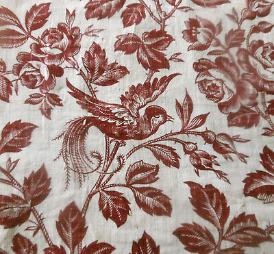 Antique 19thc French Bird Roses Floral Cotton Fabric ~ Madder Burgundy