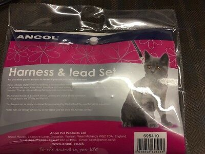 cat harness and lead