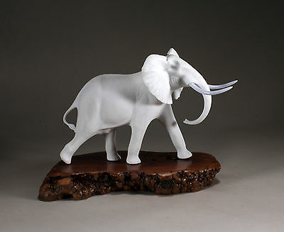 Elephant Sculpture New Direct from John Perry Pellucida 8in Tall Statue on Burl