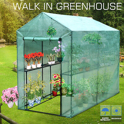Walk In Greenhouse Garden Green House Plant House Shed PE Cover Apex Roof