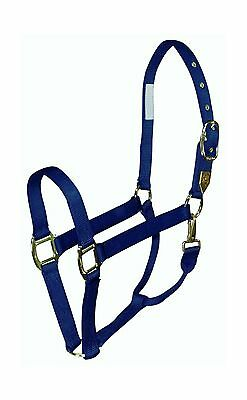 Hamilton 1DS LGNV 1 Nylon Halter with Snap Large Size  1100-1600-Pounds N... New