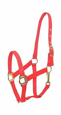 Gatsby Classic Nylon Halter w/Snap - Red Horse New