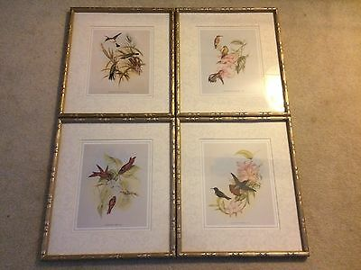 John Gould Ornithologist & Bird Artist-Four  Framed/matted Hummingbird Prints