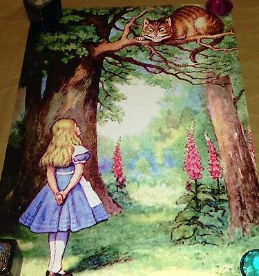 Alice In Wonderland Poster Cheshire Cat The Fosters Maia Cierra Gay Int LGBT❤️