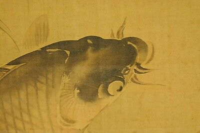 Japanese Painting Hanging Scroll Carp Asian Antique Picture Japan ink art a776