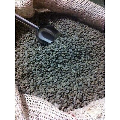 500G Raw Washed Kenya AA FAQ Arabica Green Coffee Beans for home roaster Cafe