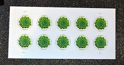 2017USA #5198 Global Forever Rate - Green Succulent - Sheet 10 Mint postage sase