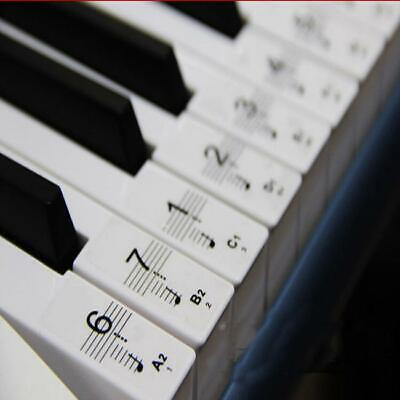 Music Keyboard /Piano Stickers For Key Learn to Play Faster Beginner Decal Y