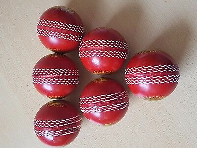 Cricket Players Training Match Playing Practicing Indoor balls ( pack of six)
