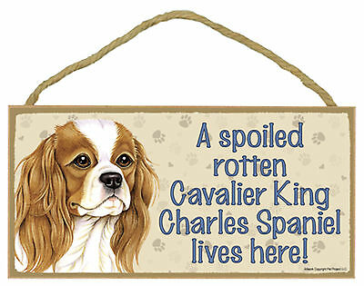 A spoiled rotten Cavalier King Charles Spaniel lives here Wood Dog Sign USA Made