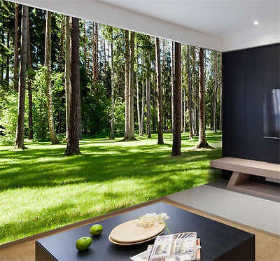 Sunny Wood Trees Forest Full Wall Mural Photo Wallpaper Print Kids Home 3D Decal
