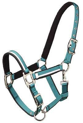 ZIPCO Heritage Visage Halter in Saphire OR Fanfare Green + FREE POSTAGE