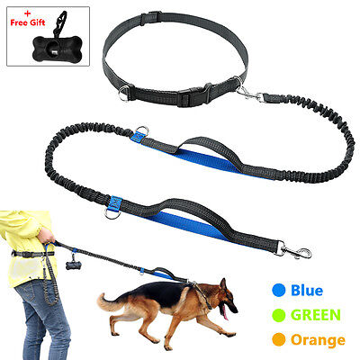 Hands Free Elastic Bungee Large Dog Leash for Hiking Running with Waist Belt