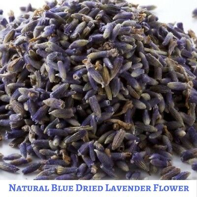 100 gram Dried Natural Blue Lavender Flower - Free Shipping No Artificial Color