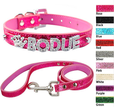 Personalised Pet Collar With Leash- Dog Puppy + Cat (Sizes Xs, S, M, L,)