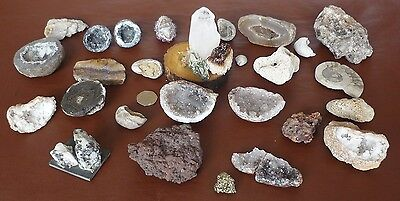 Collection of Rocks, Crystals and Minerals, Fossils, Pyrite, Amethyst, Quartz,