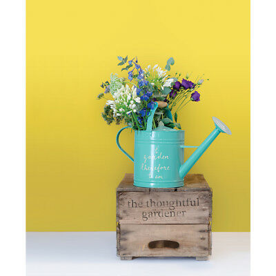 Thoughtful Gardener : Watering Can - Blue