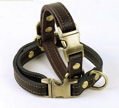 Pet Dog Genuine Leather Collar (Small-Large Dogs) -Black Brown Adjustable Puppy