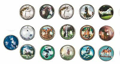 HKM Horse Images, 16, 18 Gauge, 10 Feet 70650141 16 Button Decoration Assorted
