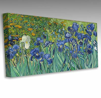 "VINCENT VAN GOGH Irises Flowers Panoramic 40x20"" Canvas Wall Fine Art Picture"