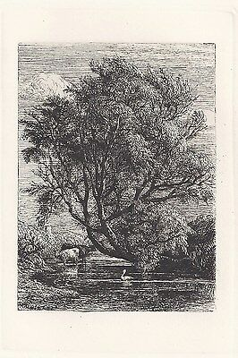 Original Etching by Samuel Palmer - The Willow (1850)