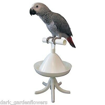 The Percher Parrot Stand Portable Parrot Training Perch