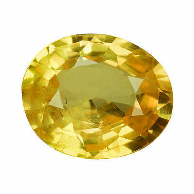 1.140Cts SPLENDIFEROUS TOP LUSTER GOLDEN YELLOW NATURAL SAPPHIRE OVAL LOOSE GEMS