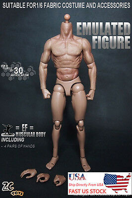 "ZC Toys 1/6th Muscular Body Fit 12"" Hot Toys Male Head Sculpt U.S.A. in stock"