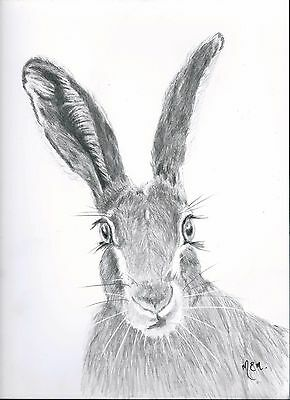 Original drawing of  a hare