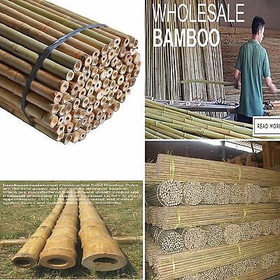 2Ft * 3Ft * 4Ft * 5Ft* 6Ft* 7Ft Bamboo Garden Canes Strong Thick Quality Support
