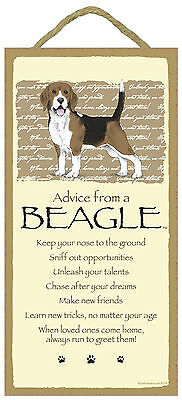 Advice from a Beagle Inspirational Wood Dog Sign Plaque Made in USA