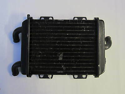 Genuine Peugeot Elyseo 125 Dn Radiator  Water Cooler 1999 - 2002  Pe738202