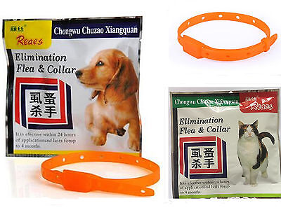 Tick insect protection collar Suitable for dog and cat fleas ticks collar