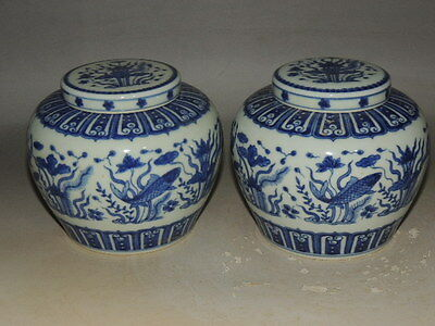 A Pair Rare Chinese B&W POTS with fish