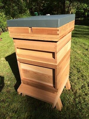 National Beehive 14x12 - Cedar. Including 2 supers & framed Q-excluder