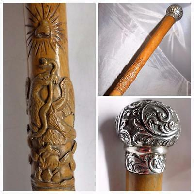 *Antique AZTEC Eagle & Snake carved cane - Hallmarked 1898 Silver Topped- 82cm*