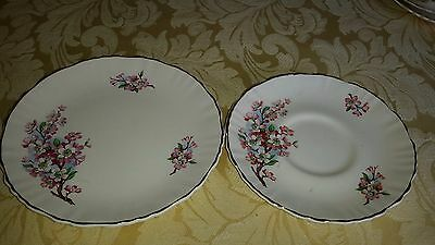 Old Foley James Kent Vintage Plate and Saucer No.5695