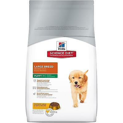Hill s Science Diet Puppy Large Breed Dry Dog Food, 30 lb Bag