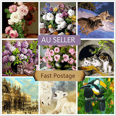 Acrylic Painting by Number Kit Canvas 40*50CM A80068107 AU STOCK HOME DECOR DIY