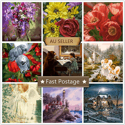 Acrylic Painting by Number Kit Canvas 40*50CM B81028080 AU STOCK HOME DECOR DIY