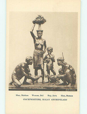 Unused 1940's STATUE AT MUSEUM OF NATURAL HISTORY Chicago Illinois IL hr1009