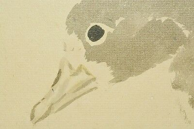 Hanging Scroll Japanese painting 春琴 浦上 Duck Fly ink Japan Asian Antique Art b283