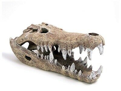 Nile Crocodile Skull Small Aquarium Fish Cave Decoration Vivarium Ornament