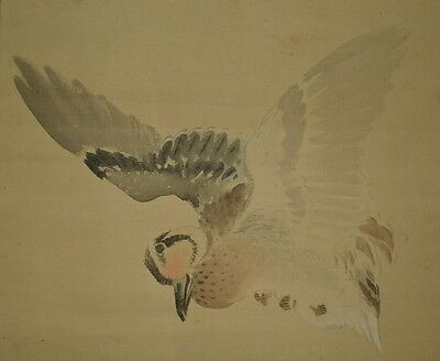 Hanging Scroll Japanese Painting Duck Japan Asian Art Bird Antique Picture x35