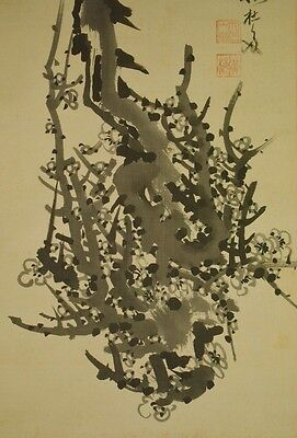 Hanging Scroll Japanese Painting Plum Tree ink Japan Asian art Picture old a530