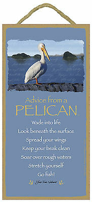Advice from a Pelican Inspirational Wood Nature Bird Sign Plaque Made in USA