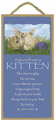 Advice from a Kitten Inspirational Wood Nature Cat Sign Plaque Made in USA