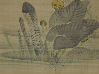 Hanging Scroll Picture sparrow Japanese Painting flower Japan Asian Art ink g45