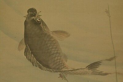 Hanging Scroll Japanese Painting Pond Carp Picture Asian ink Japan Antique a291